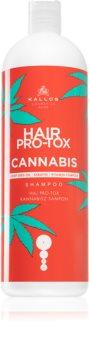 Kallos Hair Pro-Tox Cannabis regeneráló sampon kender olajjal