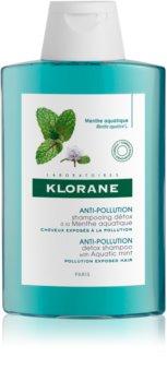 Klorane Aquatic Mint champô de limpeza desintoxicante para cabelo exposto à poluição
