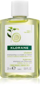 Klorane Cédrat šampon za normalnu i masnu kosu
