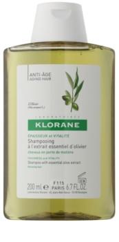Klorane Olive Extract szampon z olejkami z ekstraktów z oliwek