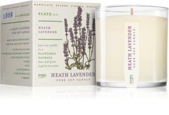 KOBO Plant The Box Heath Lavender illatos gyertya