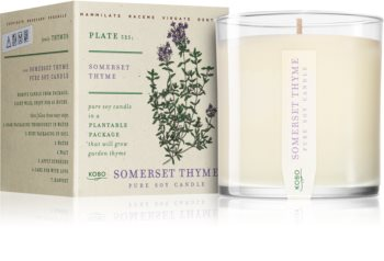 KOBO Plant The Box Somerset Thyme scented candle