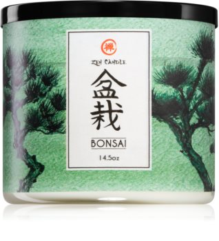 Kringle Candle Zen Bonsai dišeča sveča