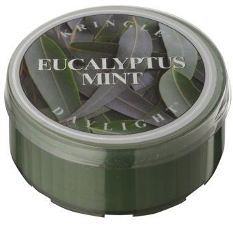 Kringle Candle Eucalyptus Mint čajová svíčka