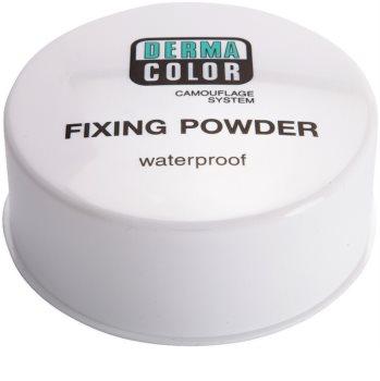 Kryolan Dermacolor Camouflage System Waterproof Setting Powder Big Package