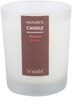 Ligne ST. Barth Guave scented candle