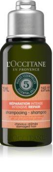 L'Occitane Aromachologie sampon pentru regenerare pentru păr uscat și deteriorat