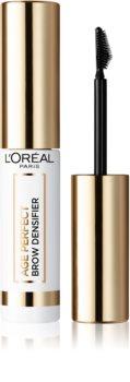 L'Oréal Paris Age Perfect Brow Densifier Mascara für die Augenbrauen
