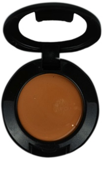 MAC Studio Finish Correcting Concelear