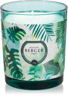 Maison Berger Paris Immersion Fresh Eucalyptus vonná sviečka