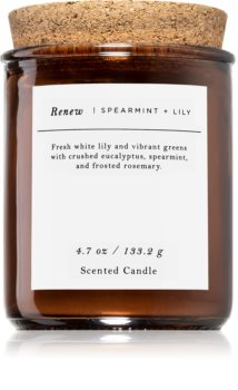 Makers of Wax Goods Spearmint & Lily αρωματικό κερί