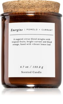 Makers of Wax Goods Pomelo & Currant candela profumata
