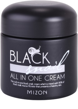 Mizon Black Snail All in One Hautcreme mit Filtrat aus Schneckensekret 90%
