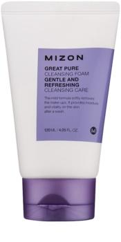 Mizon Great Pure jemná čisticí pěna na obličej