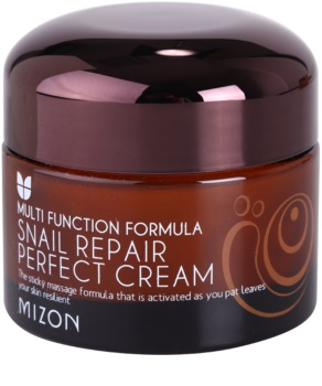 Mizon Multi Function Formula Snail Face Cream With Filtered Snail Mucous 60%