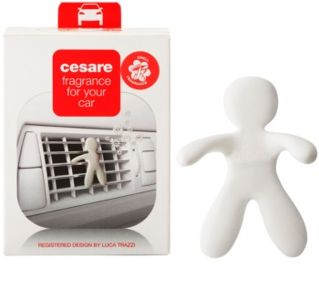 Mr & Mrs Fragrance Cesare Fresh Air parfum pentru masina I.
