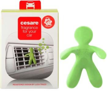 Mr & Mrs Fragrance Cesare Citrus car air freshener I.