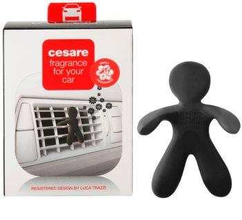 Mr & Mrs Fragrance Cesare Cedar Wood miris za auto I.