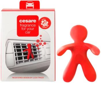 Mr & Mrs Fragrance Cesare Pepper Mint parfum pentru masina I.
