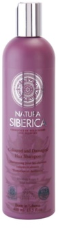 Natura Siberica Wild Herbs and Flowers Shampoo For Damaged And Colored Hair