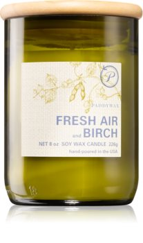 Paddywax Eco Green Fresh Air & Birch scented candle