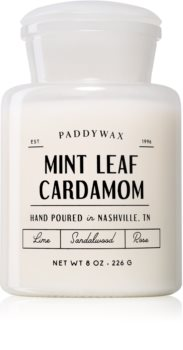 Paddywax Farmhouse Mint Leaf & Cardamom scented candle (Apothecary)