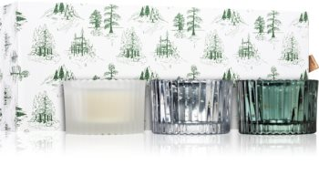 Paddywax Cypress & Fir Cypress & Fir Lahjasetti