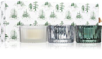Paddywax Cypress & Fir Cypress & Fir σετ δώρου