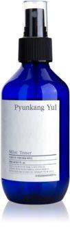Pyunkang Yul Mist Toner pleťové tonikum v spreji