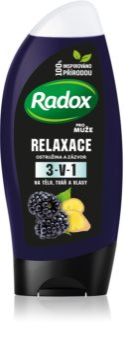 Radox Men Feel Wild Duschgel & Shampoo 2 in 1