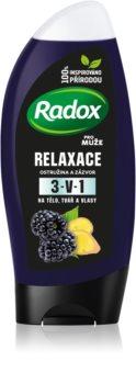 Radox Men Feel Wild sprchový gel a šampon 2 v 1