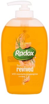 Radox Feel Fresh Feel Revived Liquid Soap for Hands