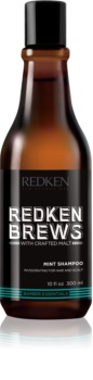 Redken Brews Invigorating Mint Shampoo for Hair and Scalp