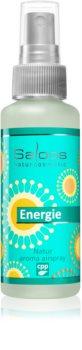 Saloos Natur Aroma Airspray Energy odświeżacz w aerozolu