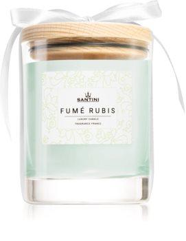 SANTINI Cosmetic Fumé Rubis dišeča sveča