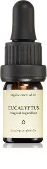 Smells Like Spells Essential Oil Eucalyptus huile essentielle parfumée
