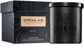 Spring Air Home Collection Grapes vela perfumada