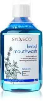 Sylveco Dental Care bain de bouche pour renforcer et renouveler l'émail dentaire pour gencives sensibles