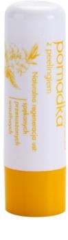 Sylveco Lip Care balsam do ust z efektem peelingu