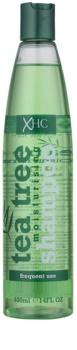 Tea Tree Hair Care hydratisierendes Shampoo zur täglichen Anwendung