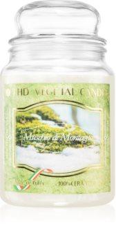 THD Vegetal Muschio Di Montagna candela profumata