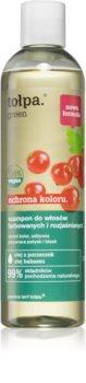 Tołpa Green Color Protect  sampon pentru stralucirea si tonifierea parului vopsit