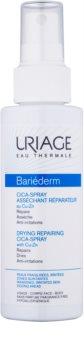 Uriage Bariéderm Cica spray assorbente riparatore con rame e zinco
