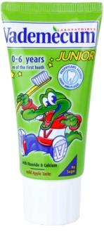 Vademecum Junior dentífrico para crianças desde o nascimento com sabor a maçã