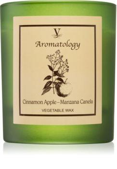 Vila Hermanos Aromatology Cinnamon and Apple αρωματικό κερί