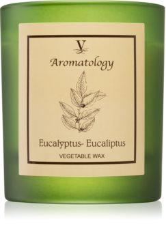 Vila Hermanos Aromatology Eucalyptus lumânare parfumată