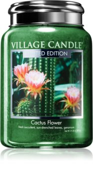 Village Candle Cactus Flower scented candle