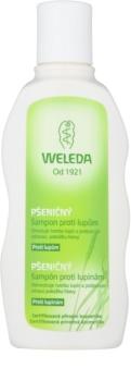 Weleda Hair Care pšeničný šampón proti lupinám