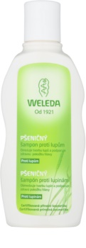 Weleda Hair Care shampoing au blé anti-pelliculaire
