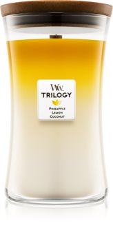 Woodwick Trilogy Fruits of Summer dišeča sveča  velika
